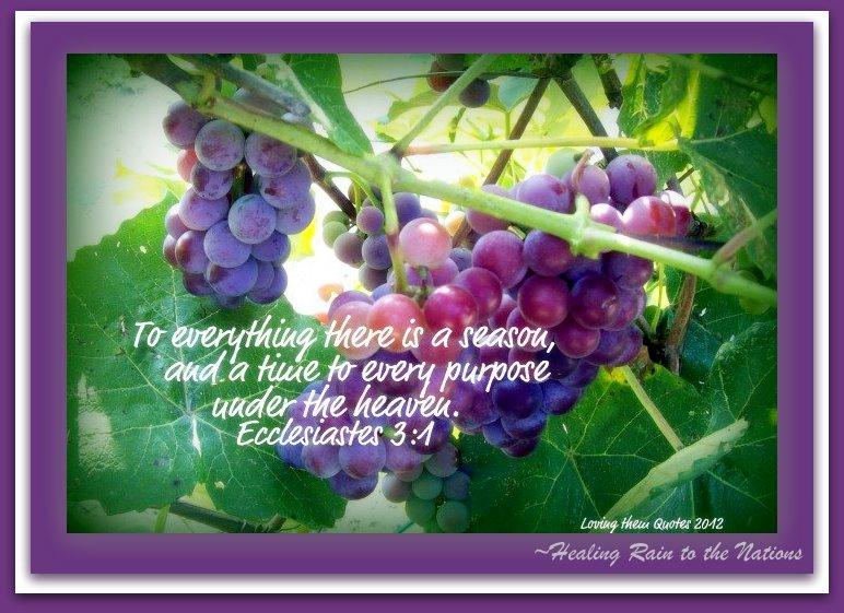 HRN Ecclesiastes 3.1